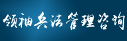 领袖兵法管理咨询有限公司