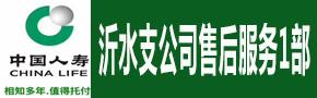 中国人寿沂水支公司售后服务1部
